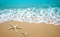 Не знаете, где провести отпуск? Изучайте курортно-морскую азбуку!
