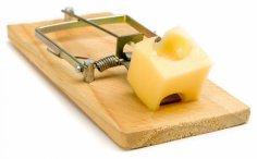 Кто заплатит за «бесплатный сыр»?