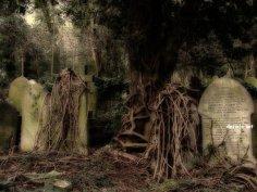 Месть царства мёртвых