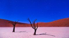 Мертвая долина в Намибии - настоящий сюрреализм природы?