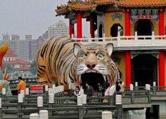 За что тигра истребляли, а за что почитали?