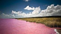 Озеро Ретба - розовое чудо Сенегала?