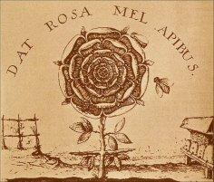 Тайное общество рыцарей розы и креста