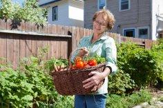 Как хранить помидоры?