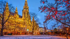 Где согреться в Вене зимой?