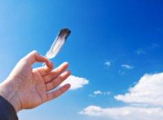 О чём расскажет длина ваших пальцев?