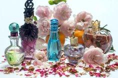 Есть ли запахи у любви?