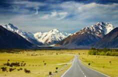 Чем уникальна природа Новой Зеландии?