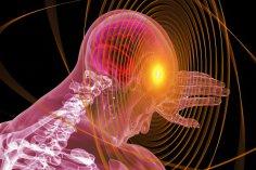 Как убрать негативное влияние нашего мозга на достижение целей?