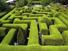 Современные туристы предпочитают лабиринты
