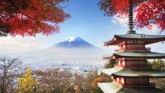 Какие традиции  действуют лишь в Японии?