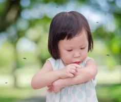Что переносят комары?