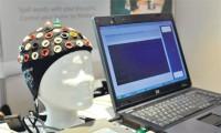 Модель мозга. Современная метафора мозга — компьютер