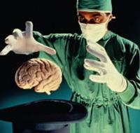 По тестам на интеллект можно предсказать будущее