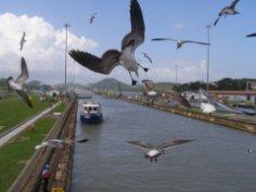 Почему так долго строили Панамский канал?