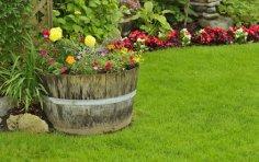Начали осваивать садовый участок? Большие и маленькие дачные хитрости - рациональная посадка и изгородь