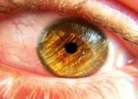 Правила здоровых глаз