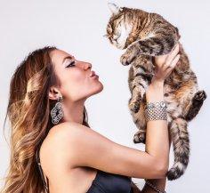 Тест: Совместимы ли вы со своей кошкой?