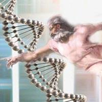 Идет расшифровка ДНК Бога
